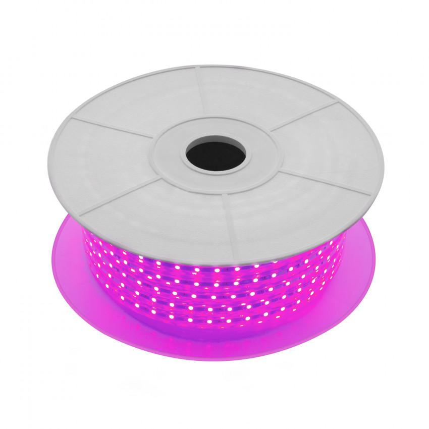 Rolo de Fita LED 220V AC SMD5050 60 LED/m Violeta (50 Metros)